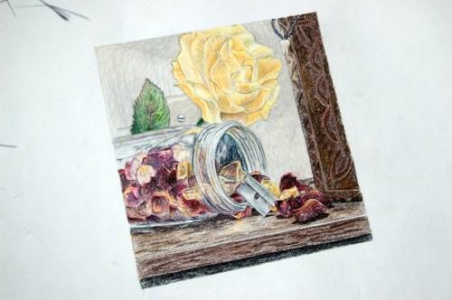 rose_petals_close