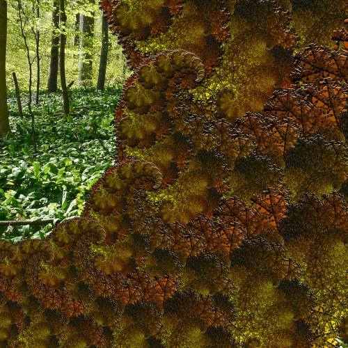 fractal moss