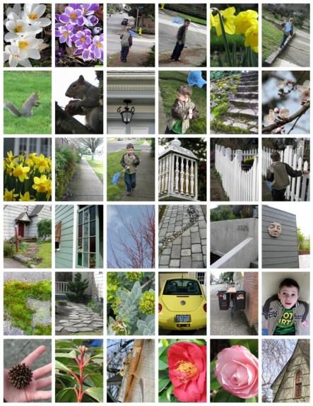Salem Oregon, Beauty, Walk, Photos, Photography