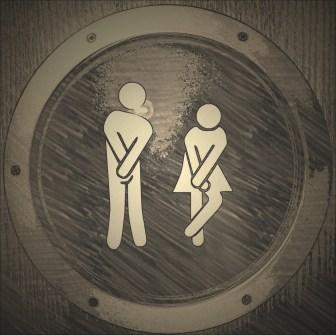 toilet-1033443_1280.jpg