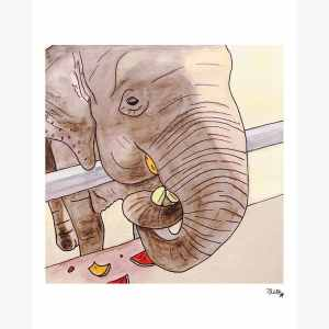 product-thumbs-scn-elephant