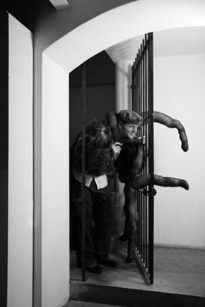Julian Rhind-Tutt as Louise Bourgeois