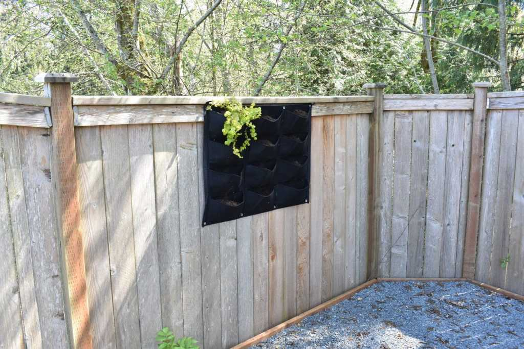 photo of felt vertical garden planter with one plant
