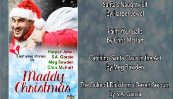BOOK BLAST: Maddy Christmas Anthology