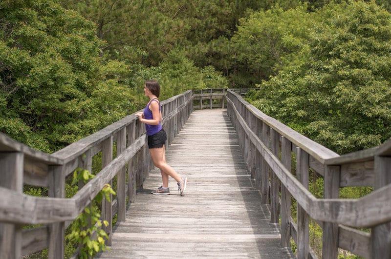 eastern shore getaways kiptopeke state park