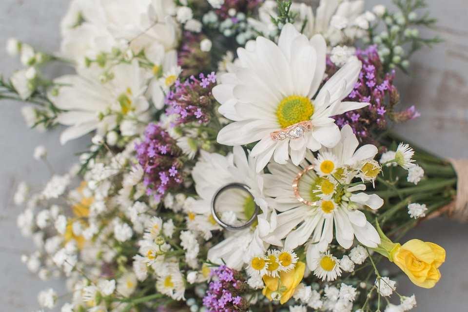 wildflowers kernersville photographer