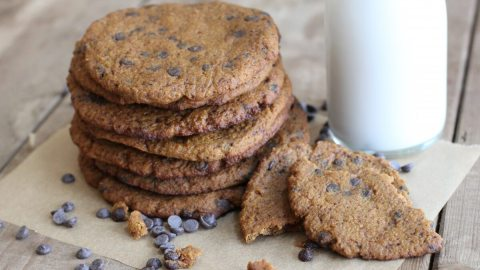 Chocolate Chip Pumpkin Cookie