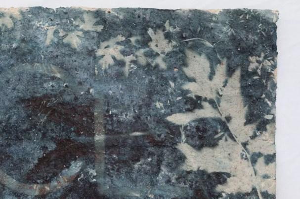 Saprophyte I (detail). 55cm x 80 cm