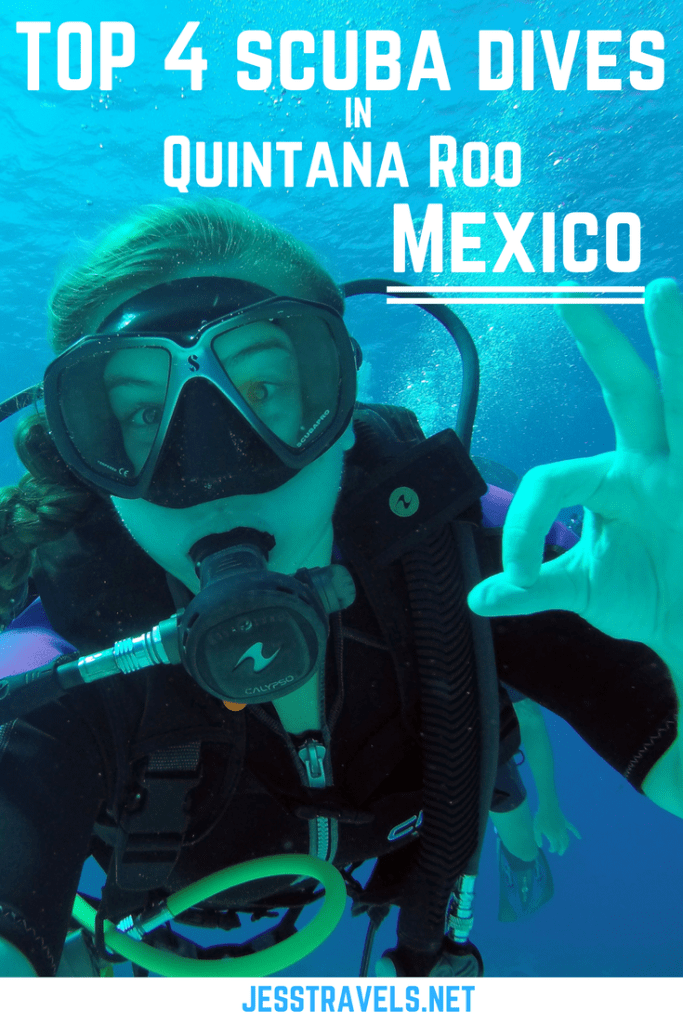 Top 4 Scuba Dives in Quintana Roo - Mexico. The 4 best dive sites in the Playa del Carmen, Cancun, Tulum and Cozumel area. Including cenote and cavern dives, diving with Bull Sharks and Cozumel.