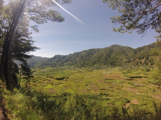 Sagada's countryside