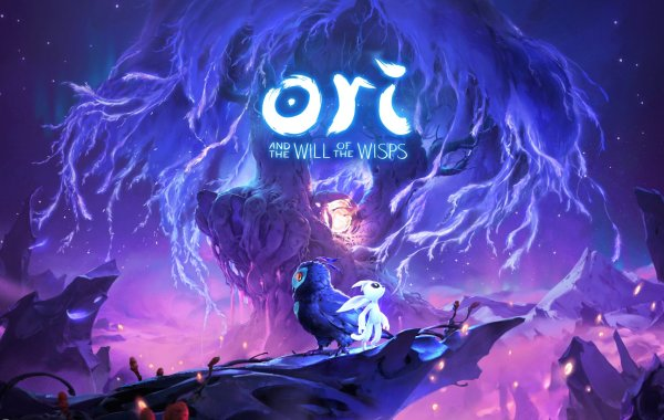 test d'Ori and the Will of the Wisps