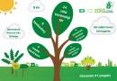 Zöld Megoldás-pályázat