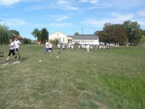 2011 m futás (1)