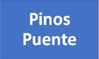 c-pinos