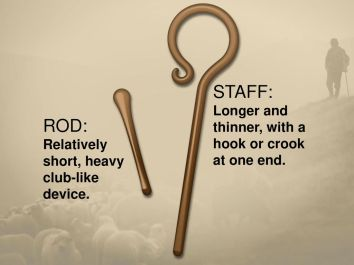ROD: Relatively short, heavy club-like device. The shepherd's rod and staff had several different functions. Among other things, the rod was used to defend the flock from predators. The staff was used to nudge the sheep in the right direction as well as retrieve them should they fall. But the rod was also used to discipline wayward sheep.