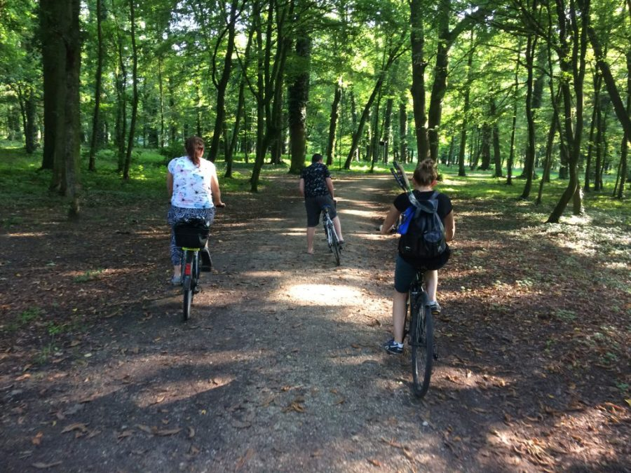 Jazda na rowerze po parku, to niewątpliwy relaks