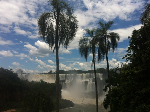 Iguazu with palms
