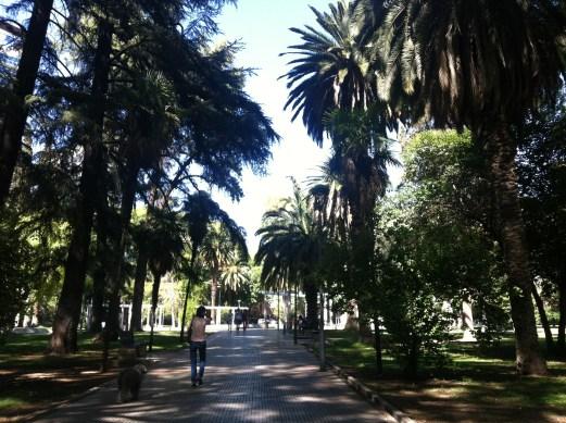Mendoza square