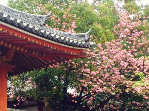 temple and blossoms