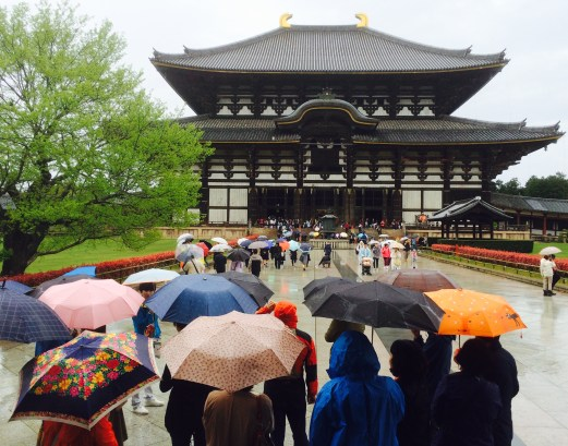 umbrellas and temple nara