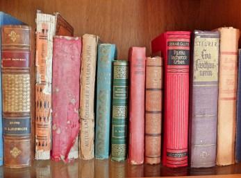 Hotel-As-Janelas-Verdes-books