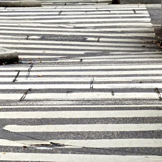 Zebragestreift