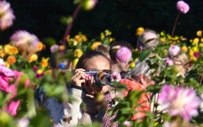 Blumen-Fotografin