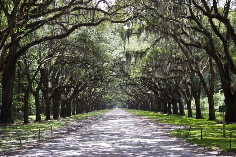 weekend getaways on the east coast - savannah, ga