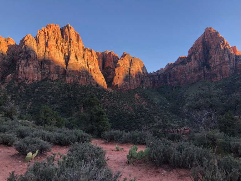 Red cliffs glow in an orange light in Zion National Park.
