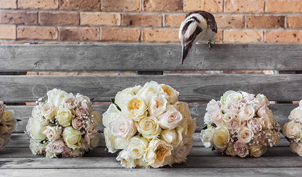 New South Wales, Australia Destination Wedding On The