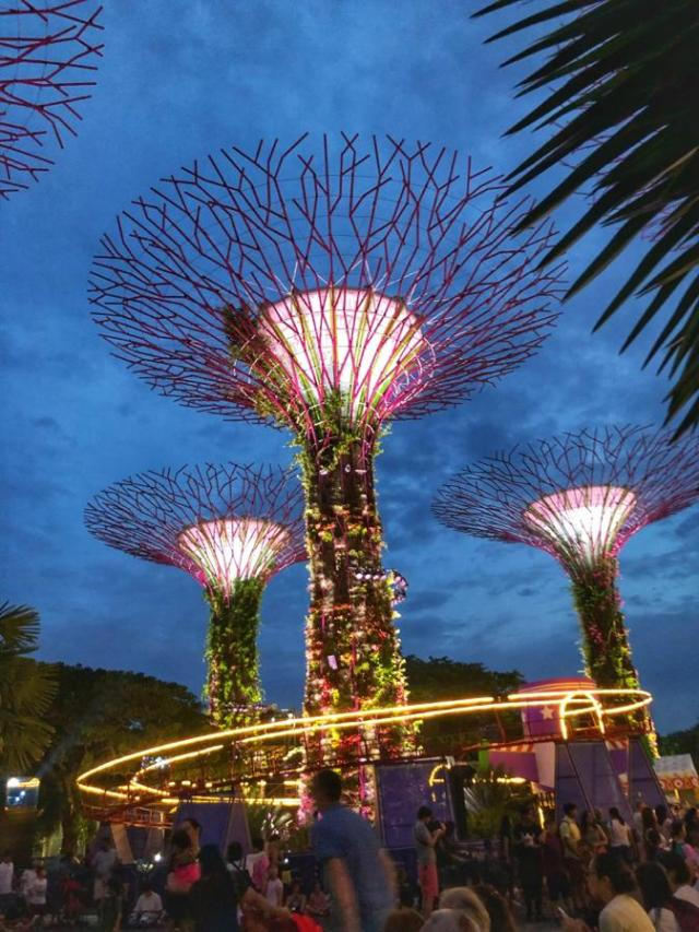 Super Trees Light show at gardens by the bay singapore