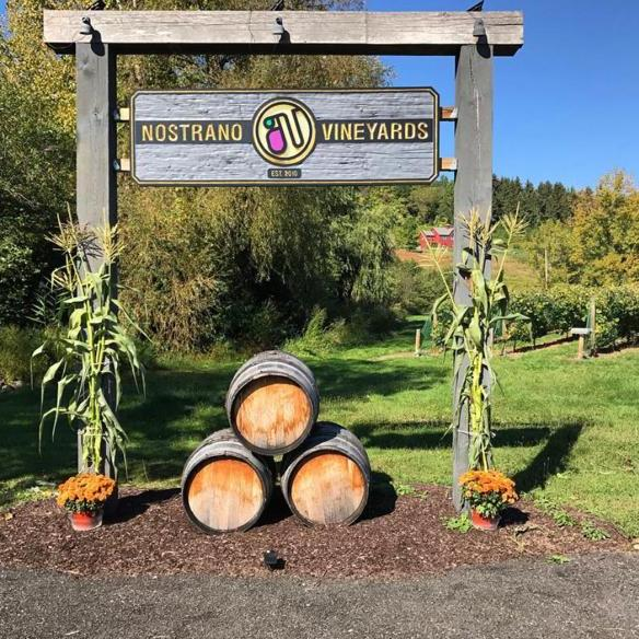 Nostrano Wine Yard - Hudson Valley New York. Stop on the best road trip USA