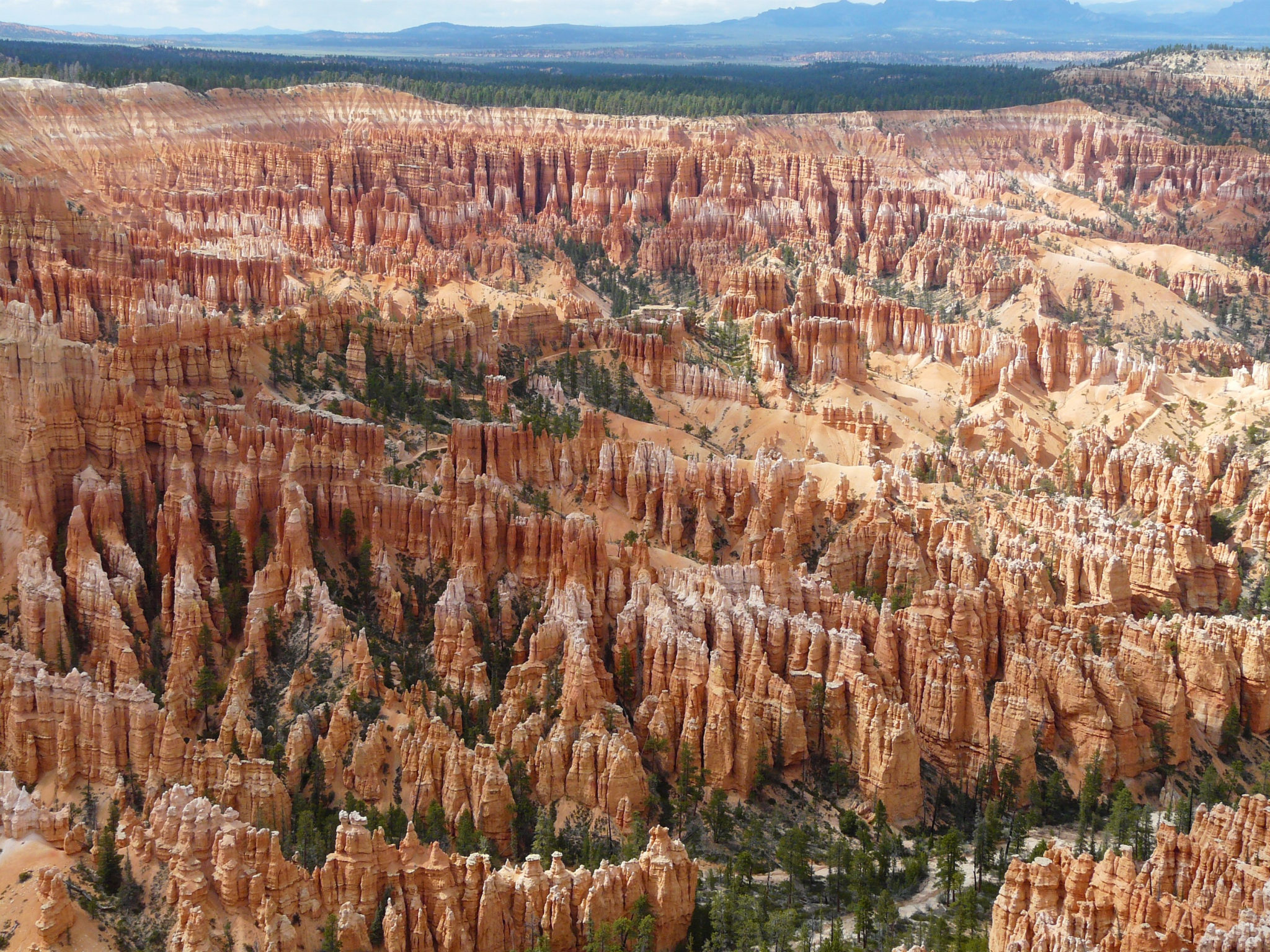 Beautiful photo of Bryce Canyon from the top. Overlooking the red sand hodoos and valley. Stop on a road trip USA