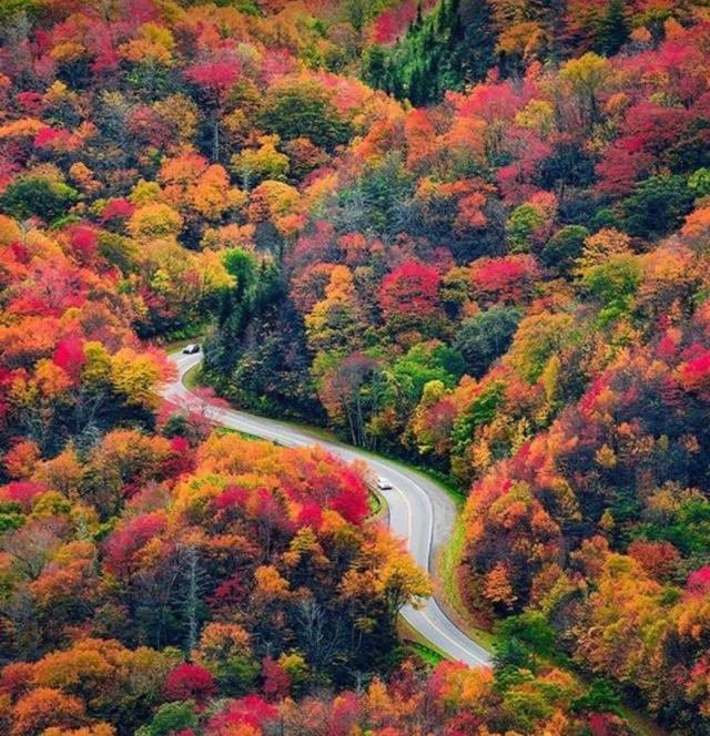 Mountain road surrounded by fall colorful trees used to show the best places to visit in the fall.