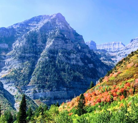 Where to see fall colors in Utah