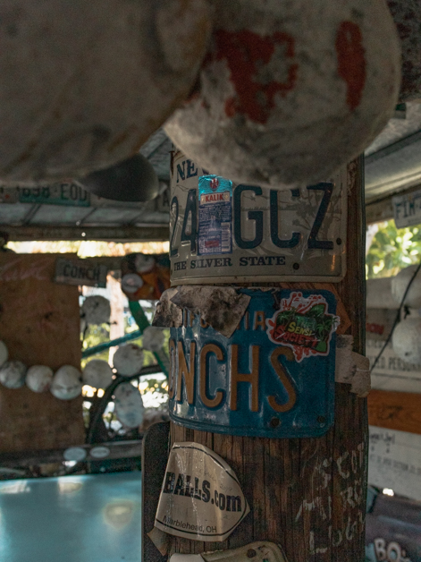 Inside of B.O.'s Fish Wagon columns with license plates.