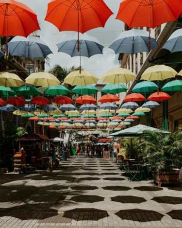umbrellas hanging above on a street in Port Louis