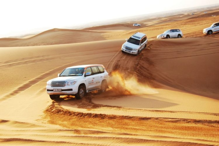 Desert Safari/ Photo credit: dubaisafariworld.com