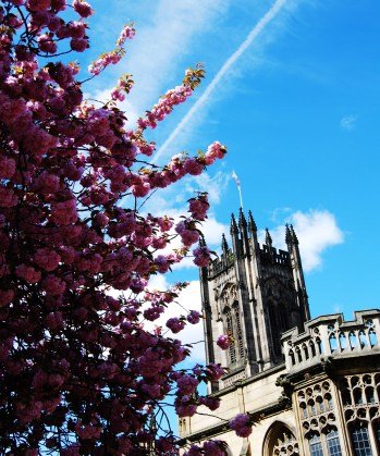 Manchester Cathedral Summertime Blossom tree blue skies
