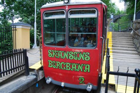 skansen-train