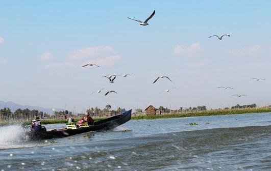 Fishermen of Inle Lake 12039