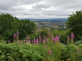 Weekend in Malvern 31