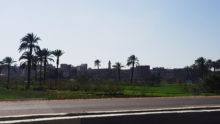 Road to Luxor, Egypt, 15