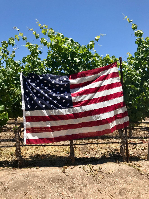 Family Friendly Wineries in Santa Barbara County