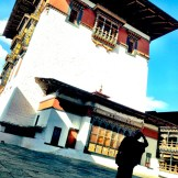 14 shrines and chapels are inside Paro Dzong