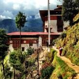 Hike up to Tango Buddhist University in Thimphu
