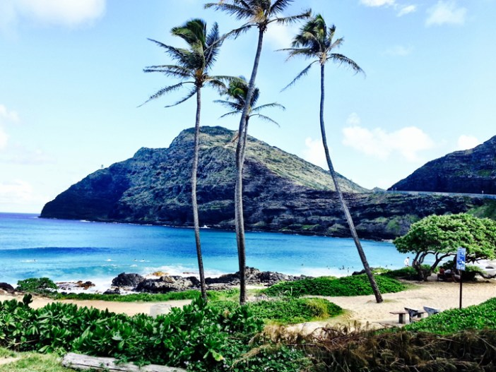 Oahu Hawaii Makapuu 1