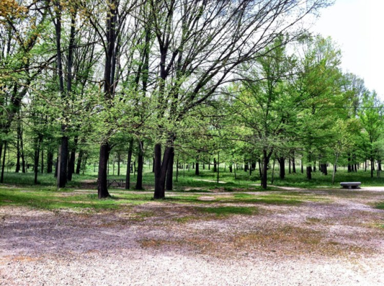 Spend your spring afternoon in madrid s best parks - Casa de campo park ...