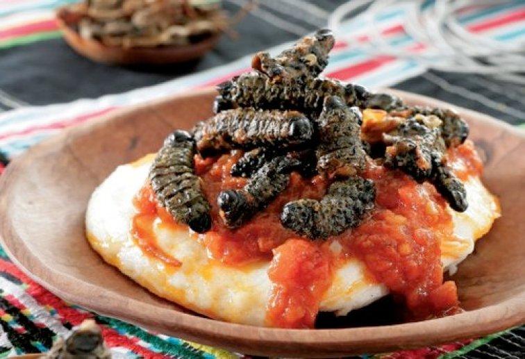 mashonza south africa food