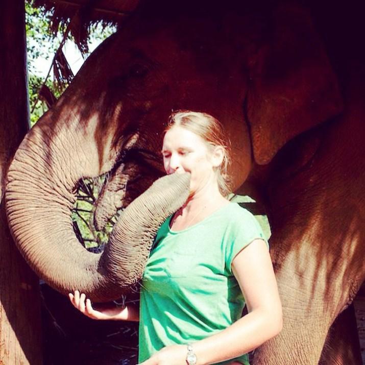 Elephant trekking Chiangmai Thailand 2